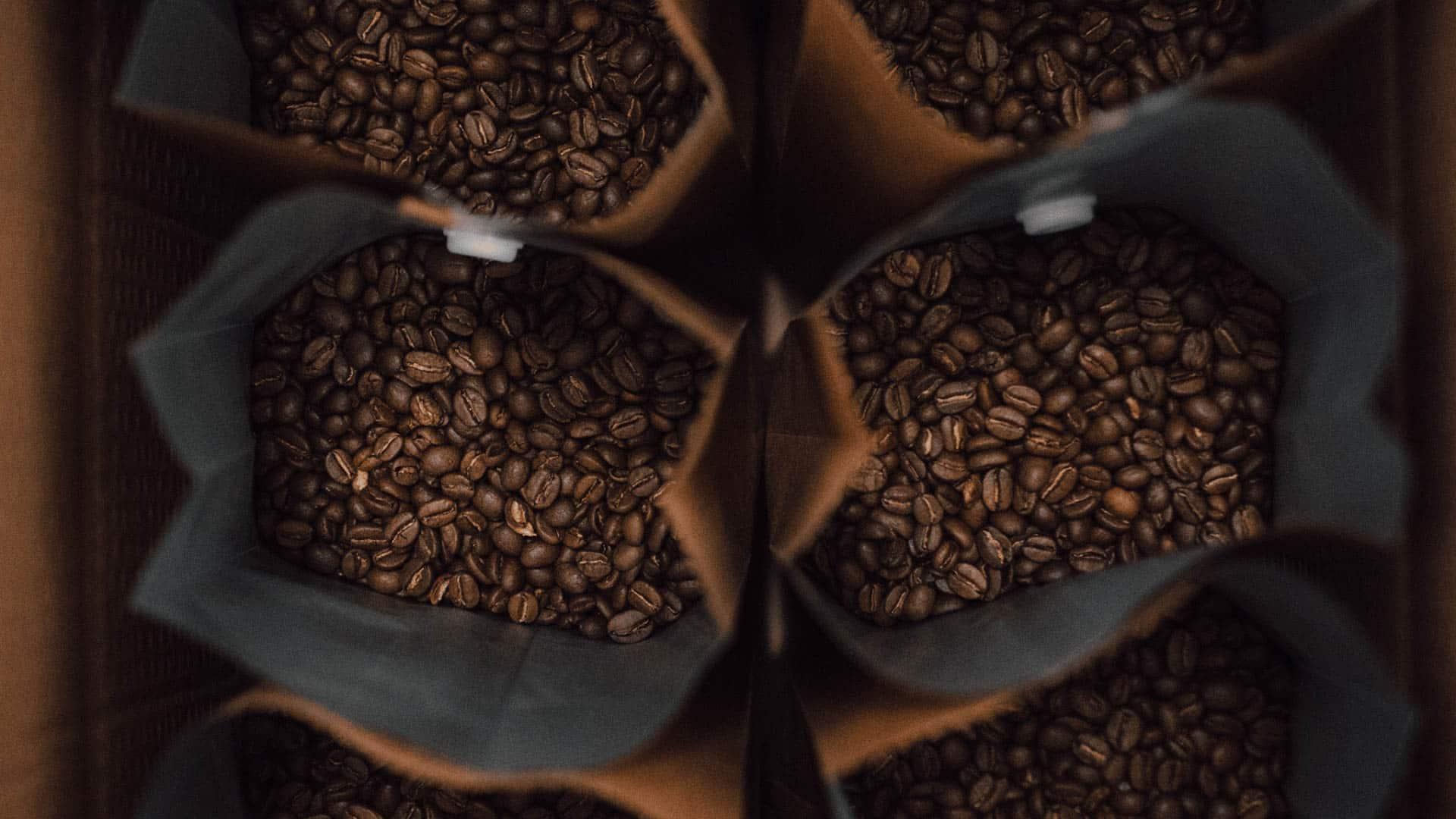 mejor molinillo cafe eléctrico de cuchillas