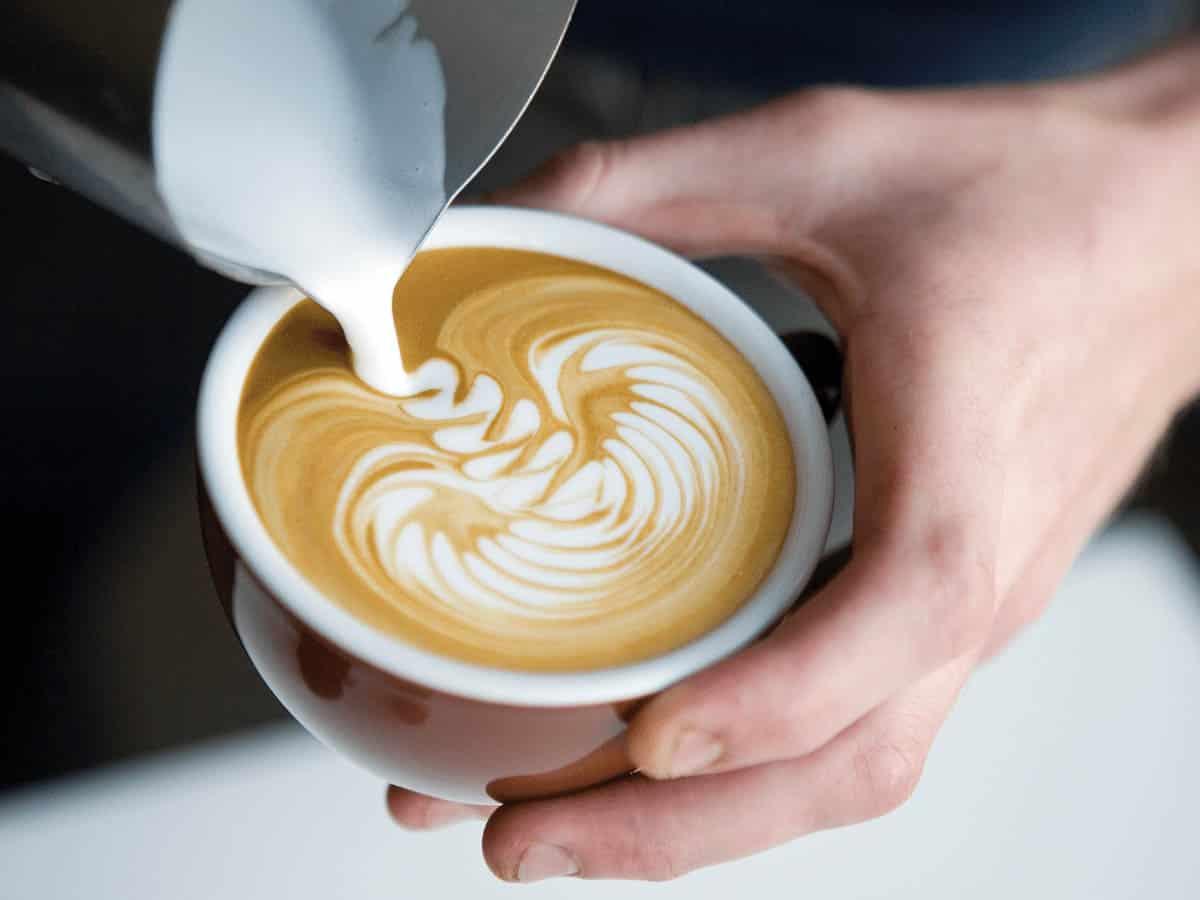 taza kopi luwak